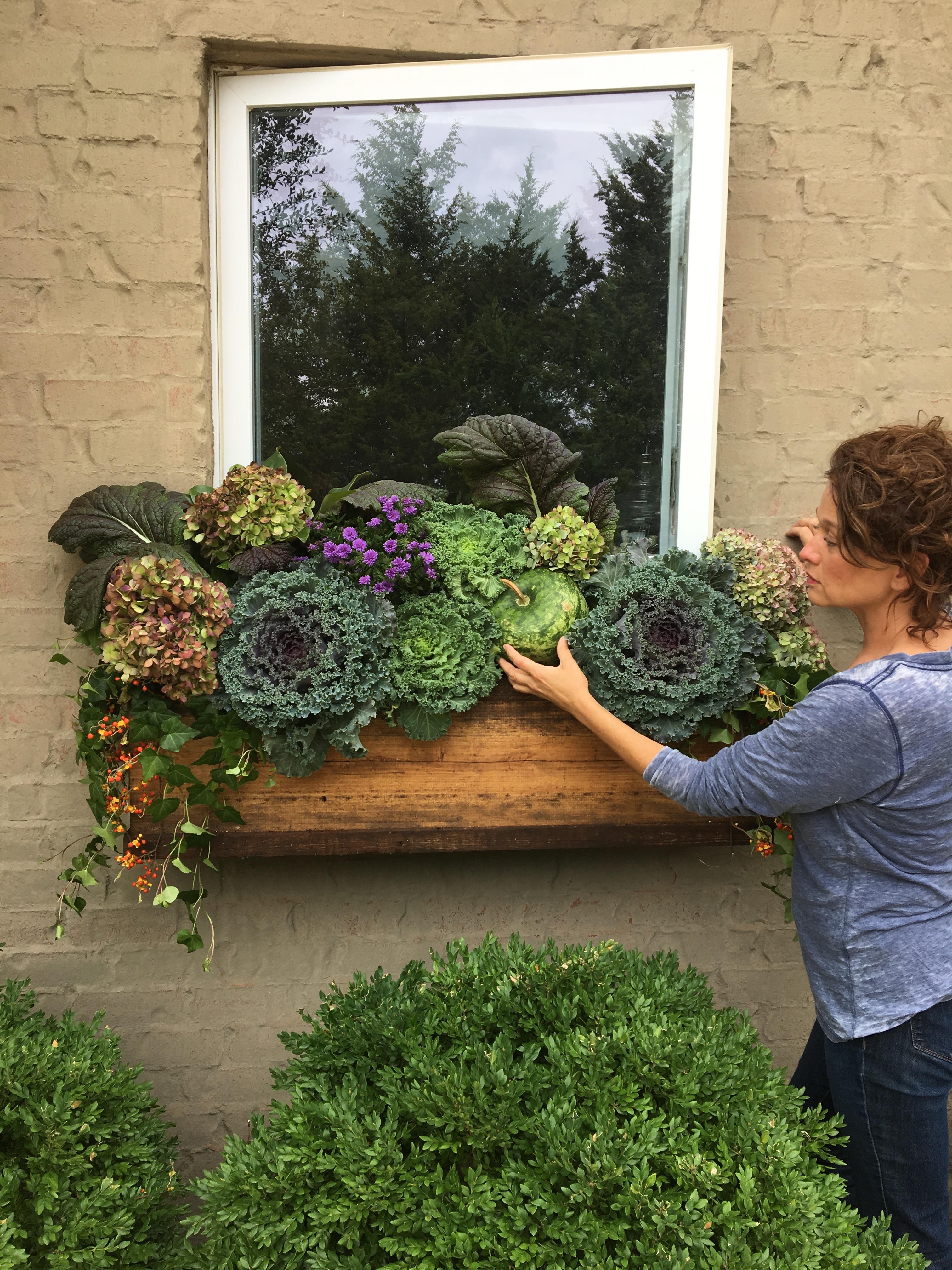 Transition Window Box Flowers from Summer to Fall ... on